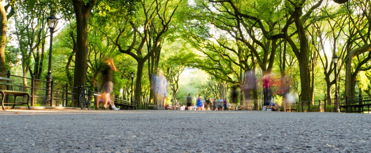 Blurry People Walking in Central Park