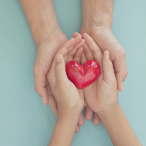 hands holding red heart, love, organ donation, mindfulness, wellbeing, family insurance and CSR concept,