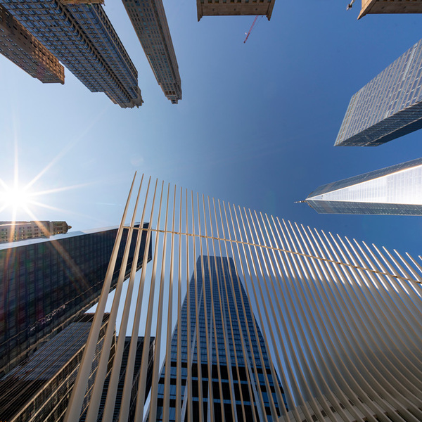 Image of skyscrapers and modern wavy figure taken from down below with a clear blue sky and shining sun