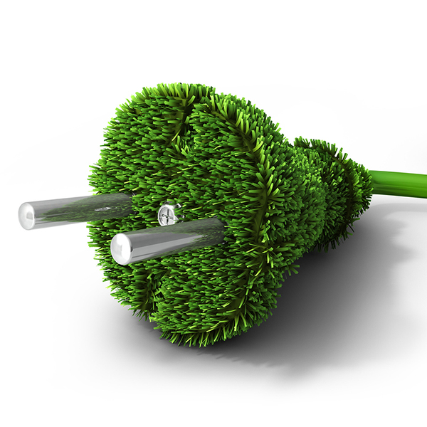 Electricity plug made of grass instead of plastic