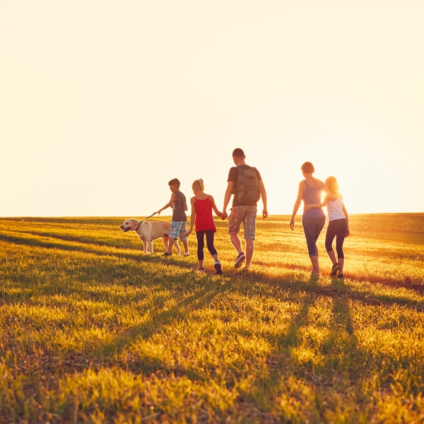 Family Walking in a Field with Setting Sun and a dog
