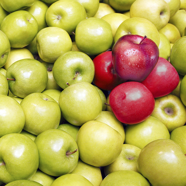 Huge pile of green apples, with 4 red apples placed on the top