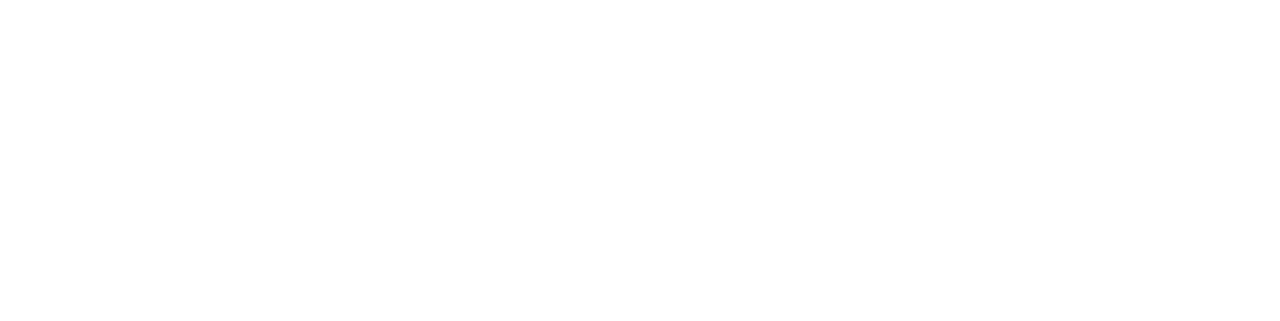 New America logo written in white with a white flag to the left.